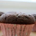 cupcake de chocolate simples na forminha de papel.